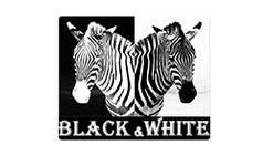 Black & White רהיטים