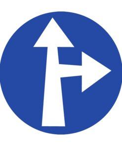 תמרור סע ישר או ימינה