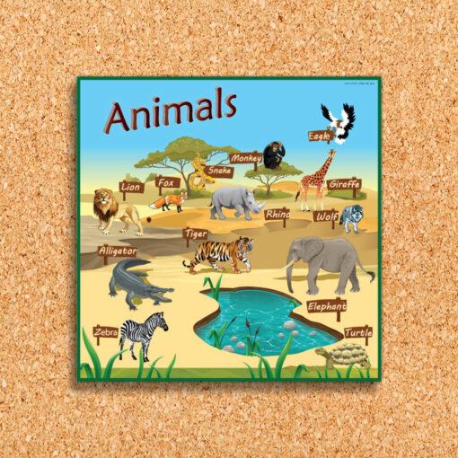 פלקט לוח בעלי חיים באנגלית